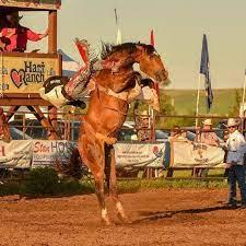 Rodeo Grounds Activities Calendar